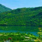 【花蓮壽豐】隱於山林的希臘藍白蹦蹦車-池南國家森林遊樂區