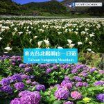 【台北陽明山一日遊】踏青、賞花好去處!一年四季都適合去~安排假期一起GO!