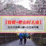【賞櫻+爬山好去處】台北內湖碧山巖+白石湖吊橋(龍骨吊橋)